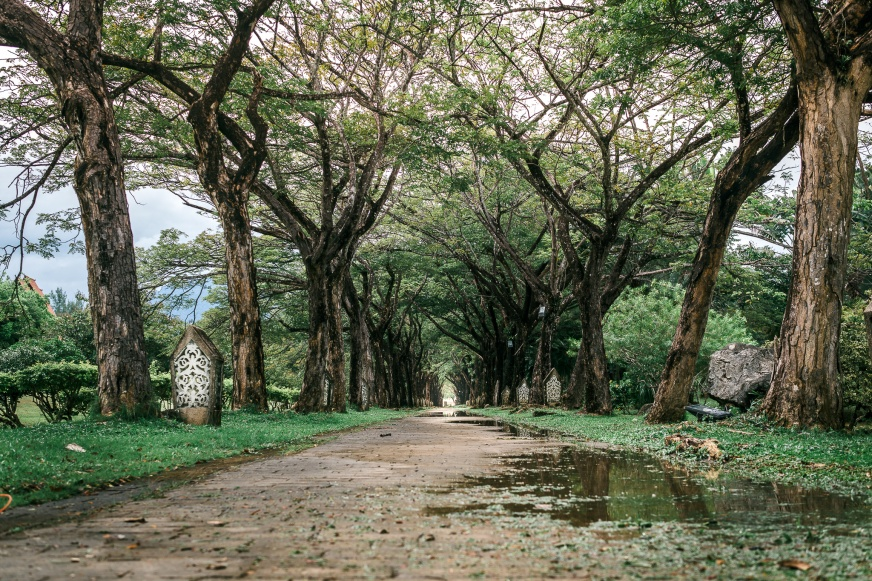 Langawi Legend Park path